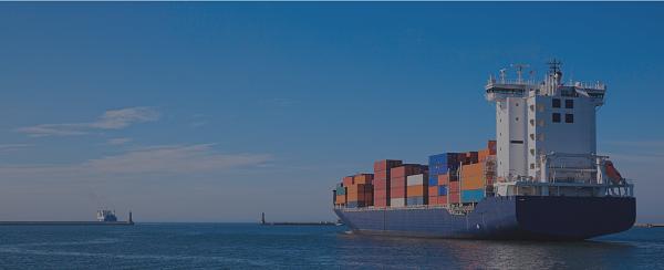 Tổng quan về dịch vụ xuất nhập khẩu hàng hóa và thủ tục hải quan ở Việt Nam.